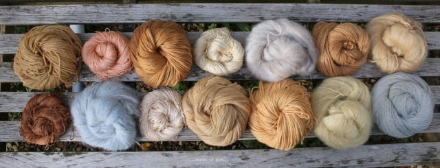 summer dyes 2015 shades of lynx